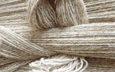 10 things you didn't know about wool